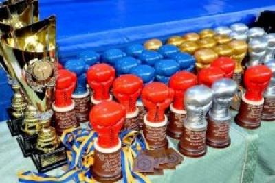 «Золото» - в наших боксерів